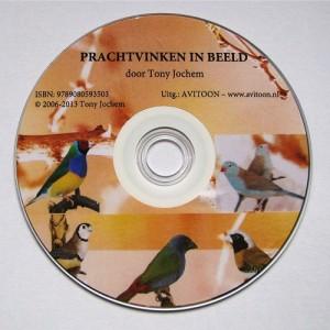 DVD NL - Prachtvinken in beeld