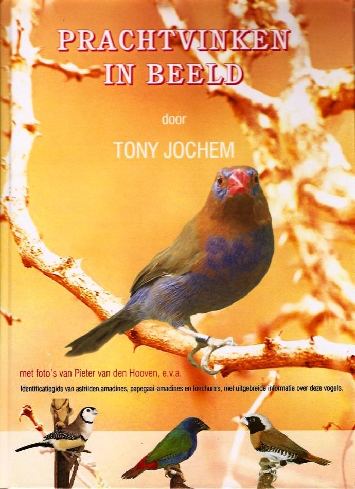 Prachtvinken in beeld - Boek - Tony Jochem - Avitoon